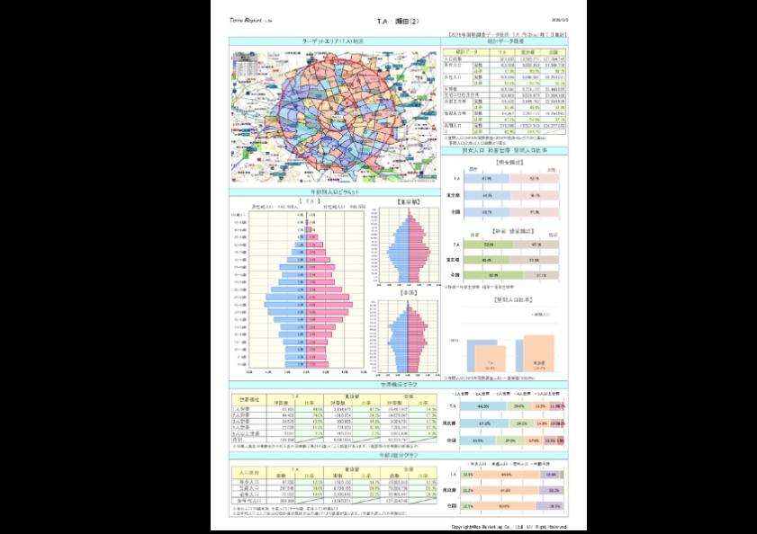 商圏分析レポートTerraReport Lite(A4縦)